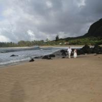 Haena Beach Wedding